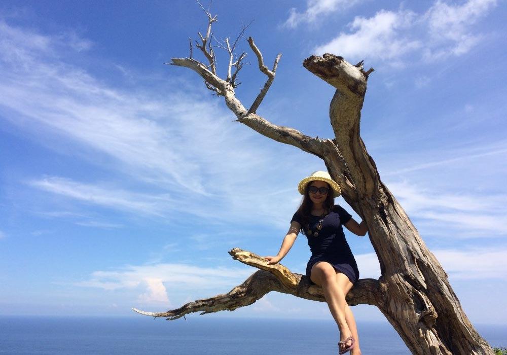 pohon cinta nusa penida